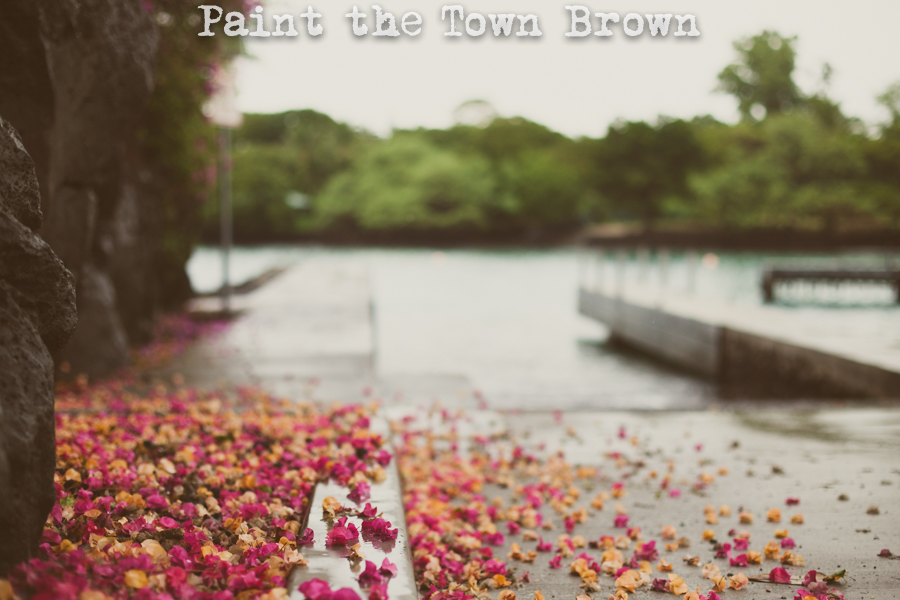 Paint-town-brown-1.