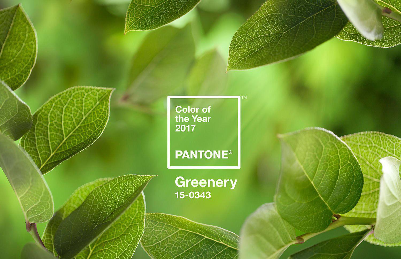 pantone-coy2017-heroshot2-rgb.