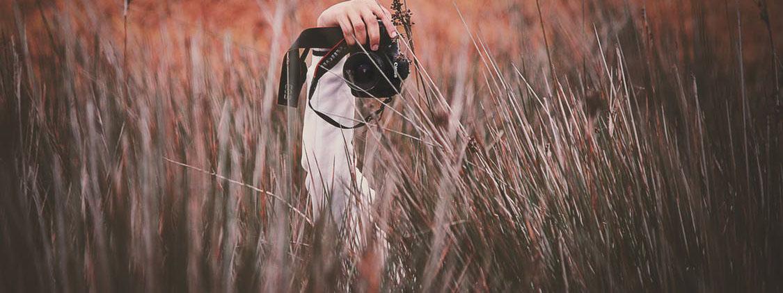 pexels-photo-324202.